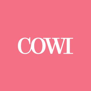 COWI – Auditorie & mødelokaler